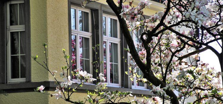 Comment bien choisir une porte-fenêtre ?
